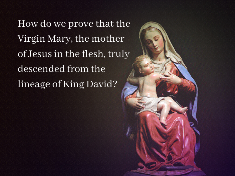 Mary is of the Lineage of King David? (19)