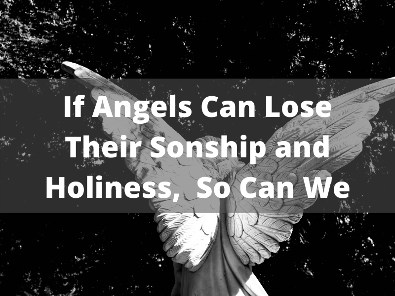 If Angels Can Lose Their Sonship and Holiness,  So Can We! (9)